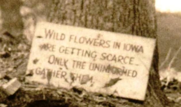 Flower sign_up close